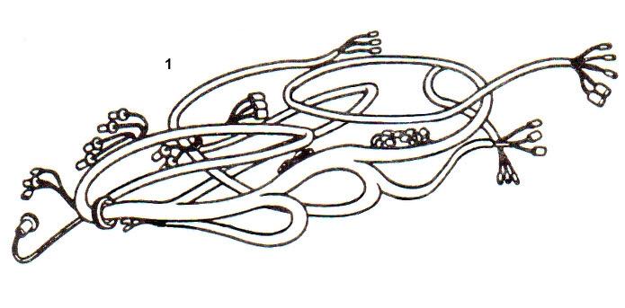 01b. BBL602 - COMPLETE LOOM - VINYL BOUND - 64-67 on mgb wiring-diagram, mgb seats, mgb overdrive wiring, mgb alternator wiring,